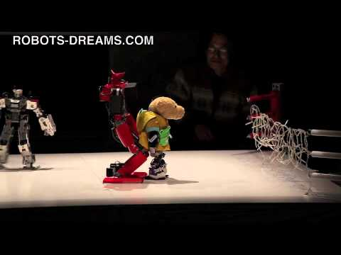 Robot Pro Wrestling 10 – Kumataro vs. King Kizer