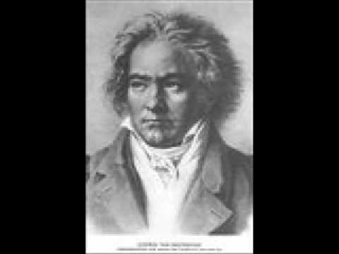 LUDWIG van BEETHOVEN - Allegro con brio