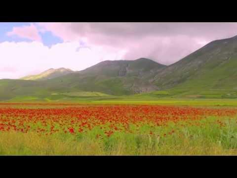 Castelluccio A Glimpse of Paradise