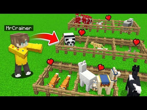 I Built My Own ZOO In Minecraft!