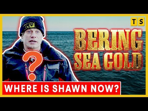 What happened to Shawn Pomrenke on Bering Sea Gold? Is he married?