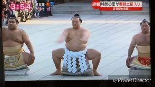 New yokozuna at meijijingu