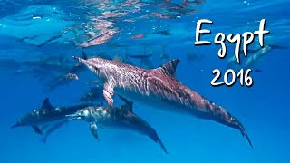 Nonton Egypt 2016  Marsa Alam  Utopia Beach Club Film Subtitle Indonesia Streaming Movie Download