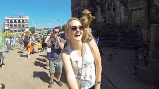 Lopburi Thailand  city photos : LOPBURI MONKEY FESTIVAL - THAILAND 2015