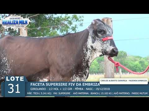 LOTE 31 - FACETA SUPERSIRE FIV -