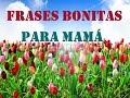 FRASES MUY BONITAS PARA MI MAMA - youtube.com
