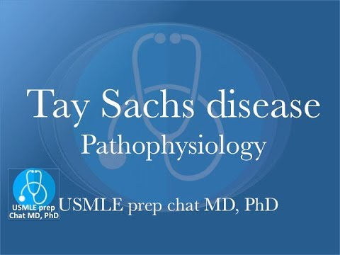 Tay Sachs disease ; a quick review