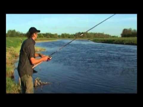 тишка ловит рыбу