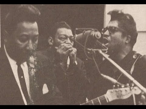 Tekst piosenki Little Walter - I've Had My Fun po polsku