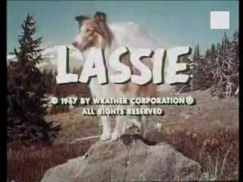 0 Lassie