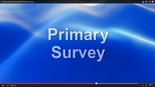 Lifeguard Primary Survey by American Lifeguard Association