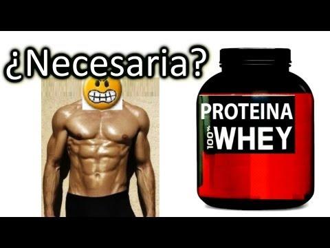 La Proteina en polvo Necesaria Para Ganar Masa Muscular Oh Perder Peso? Whey Protein