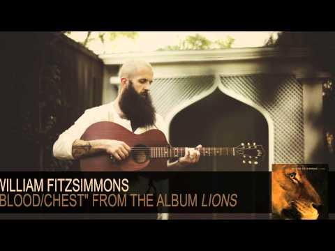 Tekst piosenki William Fitzsimmons - Blood po polsku