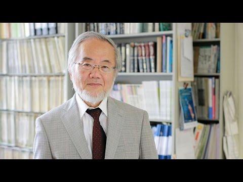 Νόμπελ Ιατρικής στον Ιάπωνα  Γιοσινόρι Οσούμι για την «αυτοφαγία»