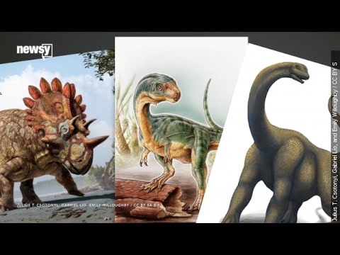 'Hellboy' To 'Thunder Thighs': How Dinos Get Their Nicknames
