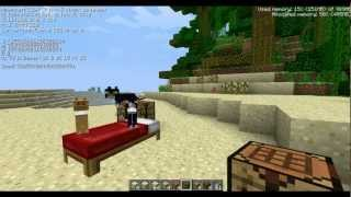 Minecraft 1.2.4 Update: Realistic Cats, New Blocks, Better Chat,&Bugs Squashed!