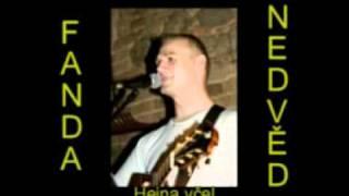 Video František Nedvěd ml. - Hejna včel