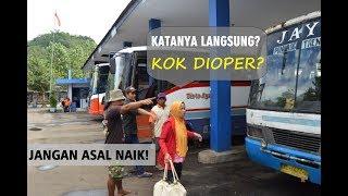 Video KAPOK Naik Bis Sembarangan?   Trip Tulungagung-Ponorogo via Trenggalek MP3, 3GP, MP4, WEBM, AVI, FLV Maret 2019