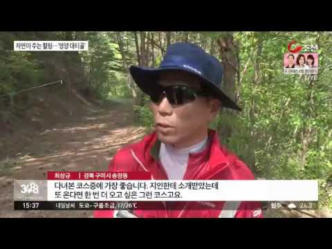 20160523 대티골 홍보동영상