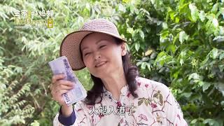 金家好媳婦 第121集 100% Wife EP121【全】