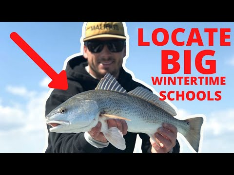 Fishing for redfish in the wintertime ~ how to locate big schools of redfish
