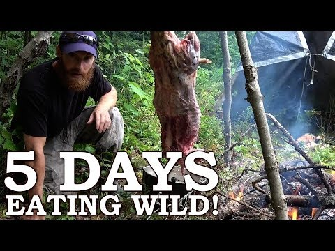 5 DAYS eating ONLY WILD FOODS! | Survival Challenge | The Wilderness Living Challenge 2017 SEASON 2