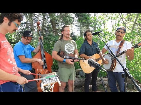 Whiskey Shivers   Long Low Down (Creekside Sessions)