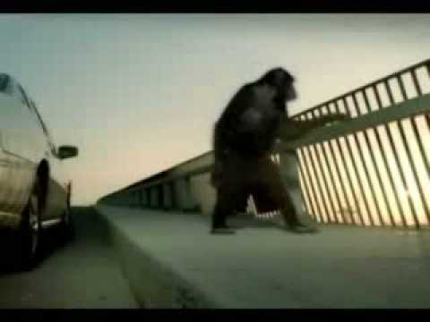 Trunk Monkey Commercials