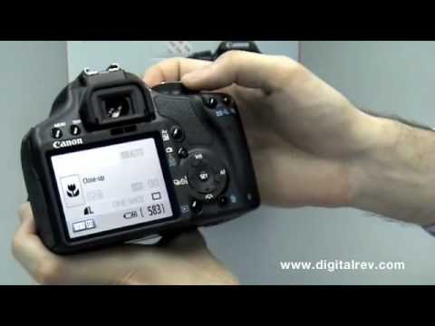 Canon EOS 500D - First Impression