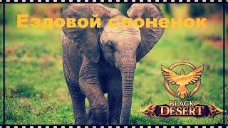 Black Desert Online Ездовой слон