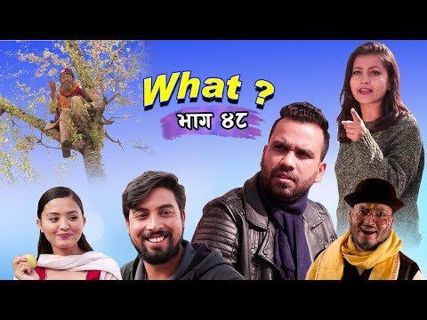 राजु मास्टरको WHAT Part 48 || 26 November || 2019 | Raju Master | Master TV