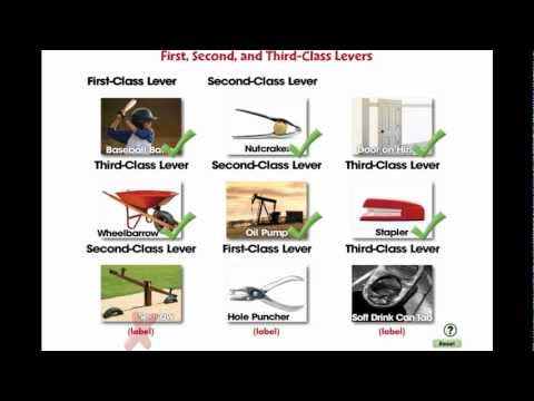 CC7555 Simple Machines: First, Second, and Third Class Levers Mini