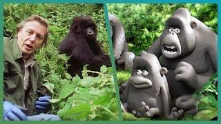 Nonton The Gorillas Meet Attenborough Ft  Aardman Animations  Attenborough90   Bbc Earth Unplugged Film Subtitle Indonesia Streaming Movie Download