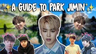 Video An Introduction to BTS: Jimin Version MP3, 3GP, MP4, WEBM, AVI, FLV Juni 2019
