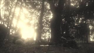 Video Nitrocel svět