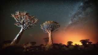 Photo Namibia  City new picture : Tusk Photo - Namibia Landscapes & Wildlife Safari