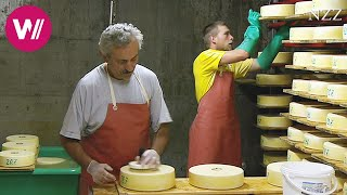 Video Cheesemaking - a visit at a Swiss dairyman MP3, 3GP, MP4, WEBM, AVI, FLV Desember 2018