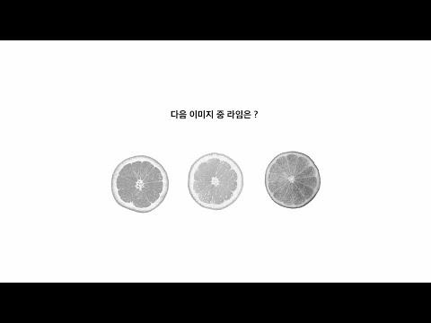 [967] 풀리지 않는 문제