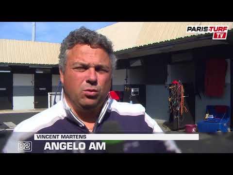 """Quinté dimanche 24/09 :  """"Angelo Am (2) n'a pas de problème avec la montée de Vincennes"""""""