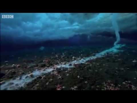 ปรากฏการณ์หาดูยาก!! นิ้วน้ำแข็ง ความงามแห่งมรณะ