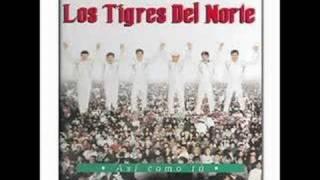 Download Lagu Los Tigres Del Norte Padres Tristes Mp3