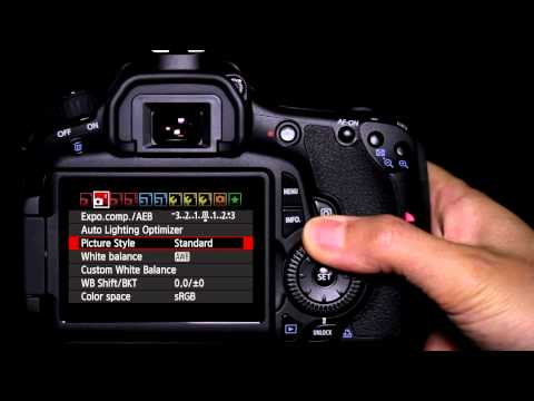 Canon EOS 60D Tutorial - Picture Style Operation 10/14