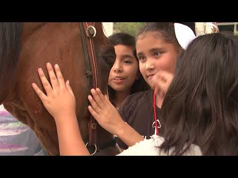 Pasadena Livestock Show and Rodeo Trail Ride to PISD Schools