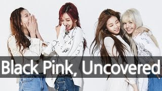 Video 'BLACKPINK' (New YG Girl Group) Uncovered 블랙핑크 [ENG SUB] MP3, 3GP, MP4, WEBM, AVI, FLV Desember 2018