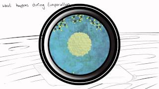 IP_2011 LMNT Nanotechnologies Ep2