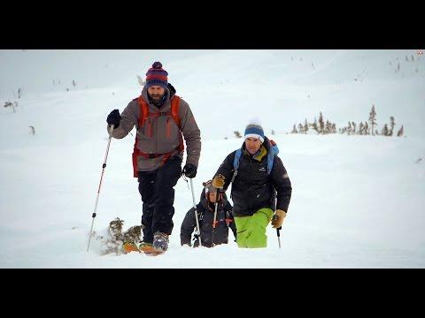 Promenade dans le White Pass au Yukon