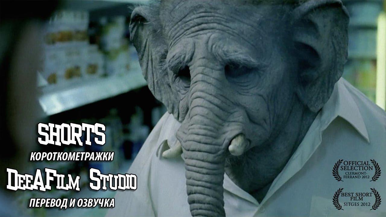 Короткометражный фильм «Слон»