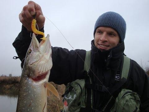 ловля судака в июле на реке весной