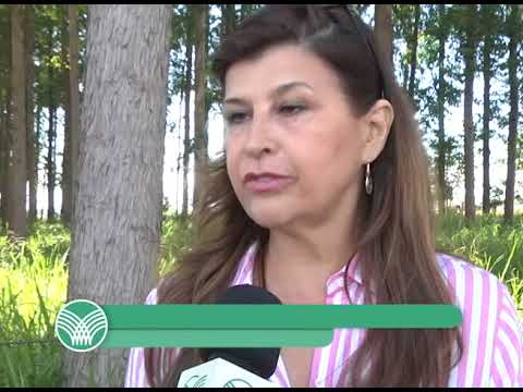 CNA EM CAMPO: Sindicatos Rurais têm papel importante na prestação de serviços para o produtor