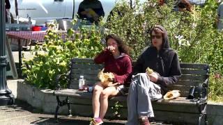 Arcata (CA) United States  city photos gallery : Arcata, CA - Hippie Heaven